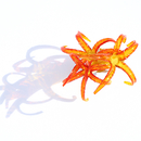 Underwater World: Redyellow Coral Pin, 2013